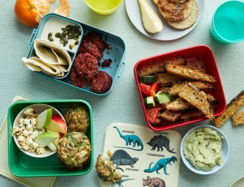 Nena Foster's Recipes for Kids' Packed Lunches